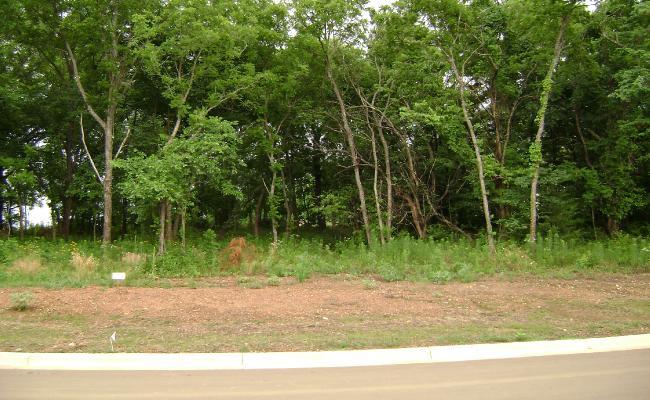 Lot 16 in Greene Woods Estates